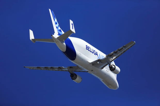 Le Beluga dans les airs