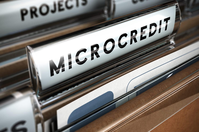 Microcrédit professionnel: définition, critères, demande...