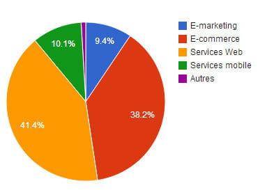 répartition des montants investis dans le web français par secteur en 2013.