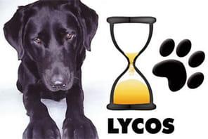 Lycos: de sa grandeur à sa décadence