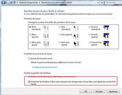 cocher cette option pour empêcher la mise en forme automatique des fenêtre