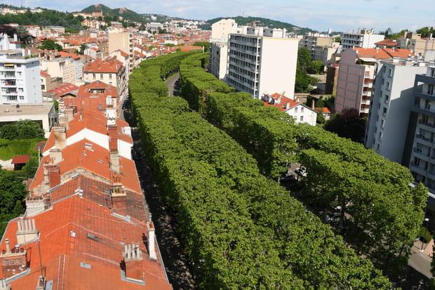 Saint-Etienne : plus de 5% de baisse des prix