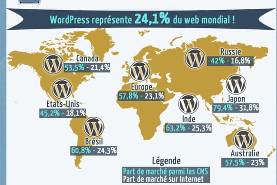 Infographie : estimations des parts de marché de WordPress dans le monde