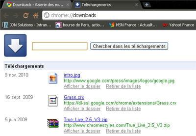 copie d'écran de l'extension downloads de google chrome