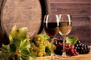 13 idées de business dans le vin