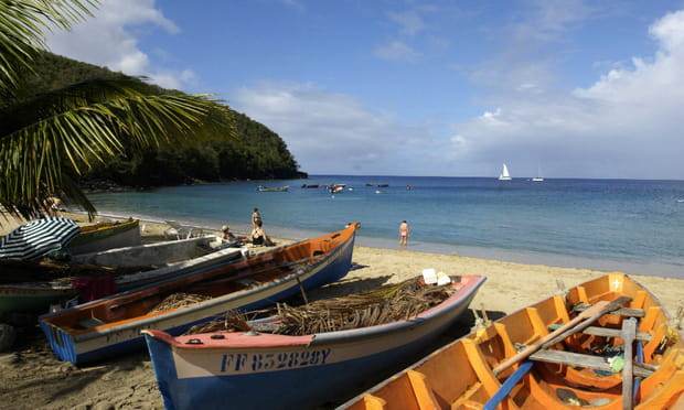 Anse Dudour (Martinique) : tortueuse