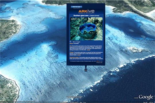 Prenez le large avec Google Ocean