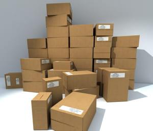 en 2007, 79 millions de produits contrefaits ont été saisis en europe.
