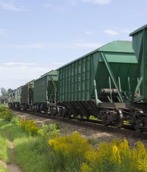 le fret ferroviaire devrait être le moyen de transport privilégié au niveau