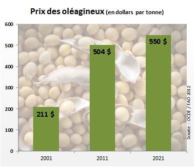 le prix des céréales oléagineuses atteindra 550dollars par tonne en 2021