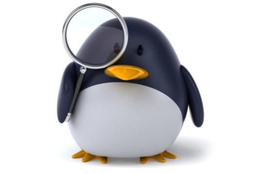 Le projet Linux en chiffres