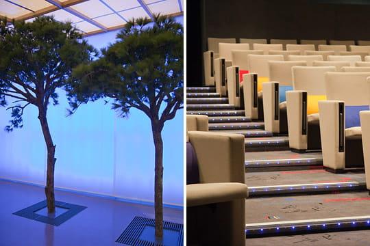 Evergreen : l'auditorium