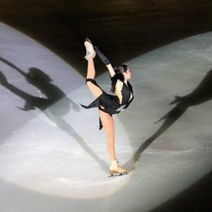 la filiale sipas productions organise notamment des spectacles sur glace.