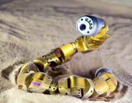 snakebot est un robot serpent. suite à une récente découverte sur les serpents à