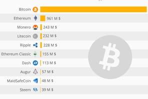 Infographie: le top 10des crypto-monnaies dans le monde