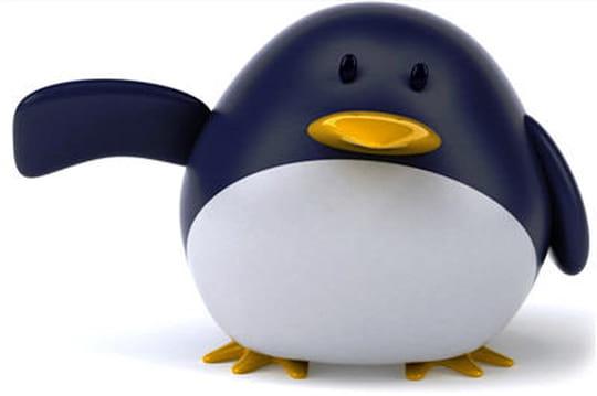 Fedora19: cap sur PHP5.5et Java8