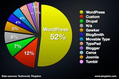 cms utilisés par le top 100 des blogs à plus fort trafic en pourcentage.