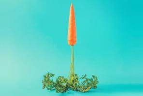 Mieux vivre son confinement : la carotte connectée, pour être aimable à la demande