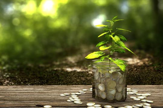 LDD 2020: plafond, taux et intérêts du nouveau LDDS