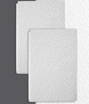 Des dalles de plafond ultra isolantes - Dalles de plafond isolantes ...