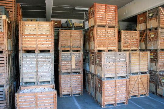 95% du bois utilisé provient de France
