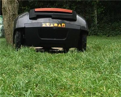 l'herbe reste sur la pelouse