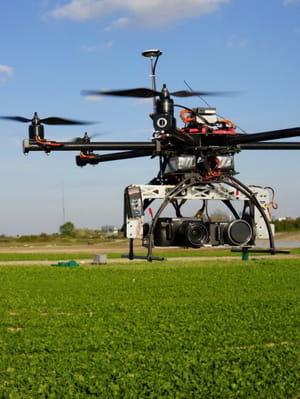 les drones permettent de mieux doser les intrants apportés aux plantes.