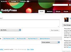 buddypress permet à chaque utilisateur de modifier les informations de son