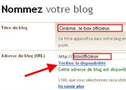 capture d'écran de l'enregistrement du nom du site et de son url.
