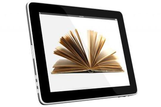 marche E-books selon xerfi