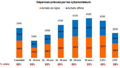 dépenses prévues par les cyberacheteurs, par âge et par csp, online et offline