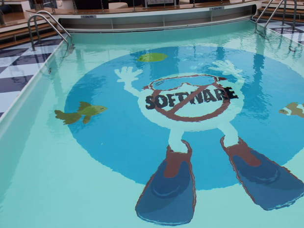 """Le logo """"No Software"""" dans la piscine"""
