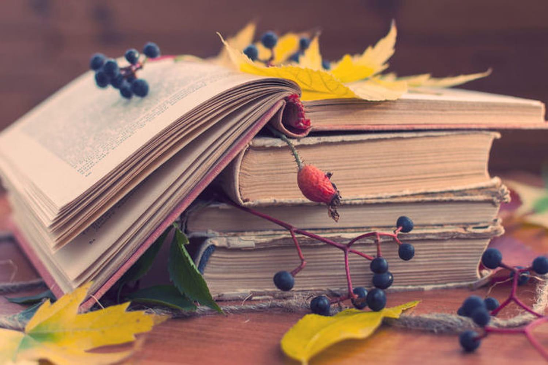 Les livres de management à lire cet automne