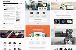 il est possible de choisir un thème wordpress en responsive web design, pour que