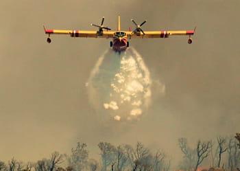 les bombardiers d'eau français effectuent 8 100 heures de vol par an.