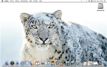 le leopard des neiges, emblème de 10.6