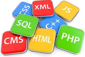 Langages les plus populaires: JavaScript double PHP