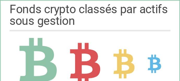 Taille, nationalité, type de gestion... Qui sont les fonds crypto dans le monde