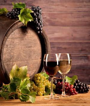 la france est le laboratoire mondial des idées de business dans le vin.
