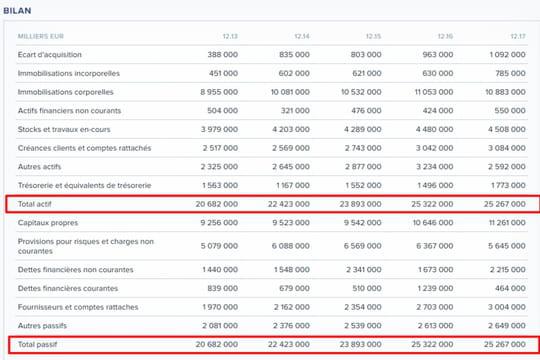 Bilan comptable: définition, composition et modèles