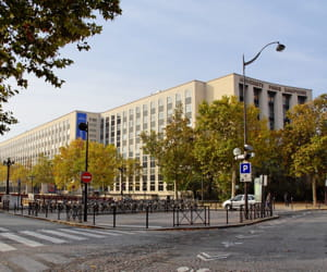 l'université de dauphine, à paris.