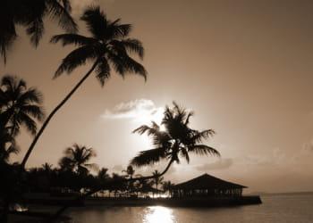 les habitants des maldives seront-ils les premières victimes du réchauffement