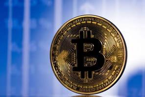Bitcoin: 100millions de détenteurs de cryptomonnaies dans le monde