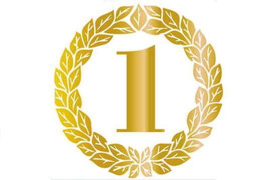 Les vainqueurs des Data Intelligence Awards 2014