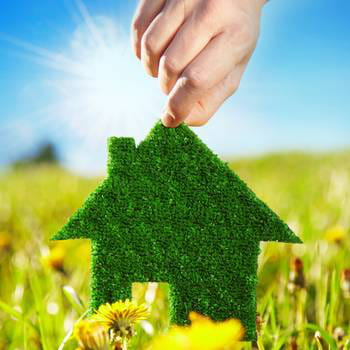 les sociétés spécialisées dans l'éco-construction grandissent.