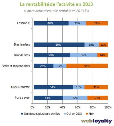 rentabilité de l'activité des sites marchands en 2013