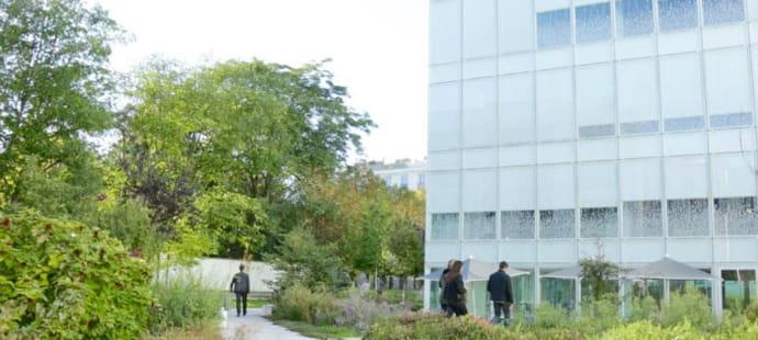 Les locaux de GroupM: verdure et zen à Neuilly-sur-Seine