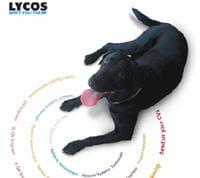 lycos a misé sur la croissance externe plus que sur l'innovation