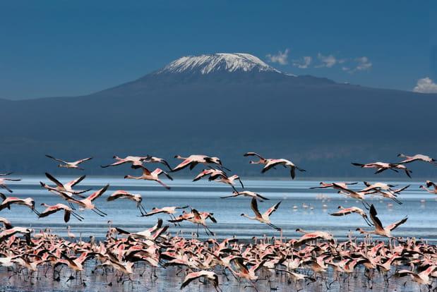Le Kilimandjaro, Tanzanie