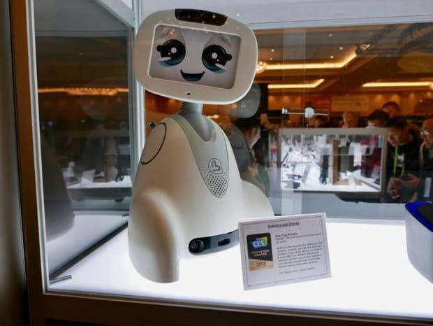 Buddy: le compagnon de Bue Frog Robotics